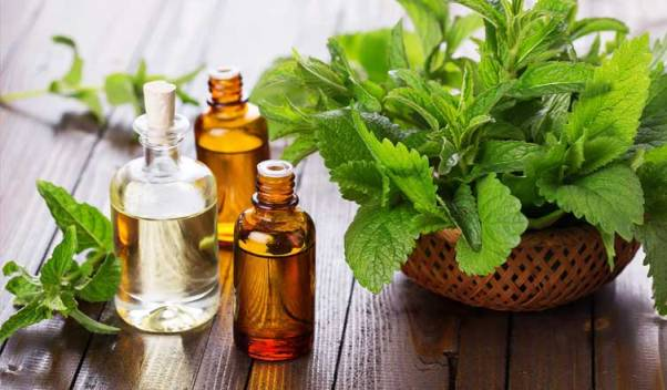 Top 10 Peppermint Essential Oil Benefits to Health, Skin & Hair