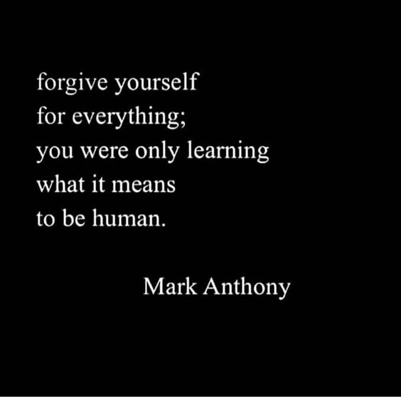 20 Best Inspirational Forgiveness Quotes Sayings