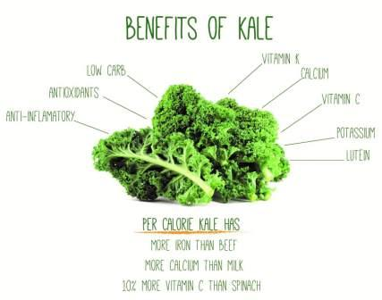 Prevent Wrinkles and Fine Lines with Kale